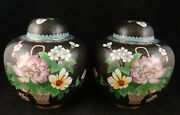 Pr. Chinese Cloisonnandeacute Covered Jars W/flowers And Leaves On Black 6 Andfrac34andrdquo Tall 6andrdquo D