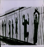 Lg823 1969 Wire Photo Kids Standing Behind Fence Seneca Park Rochester Ny Shadow