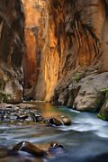 Amazing The Narrows Zion National Park Canvas Wrap Photograph By Artist