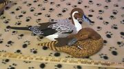 Pintail Pair Of Decoys Ralph Malpage Signed Demo Sized Vintage