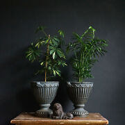 Pair Of French Cast Iron Urns. 19th Century Decorative Indoor/outdoor Planters