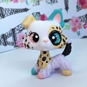 Littlest Pet Shop Dog Puppy Collie W/ Ear Up Ooak Custom Hand Painted Nice