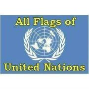 Set Of All Flags Of The United Nations 192 3 X 5 Ft Flags