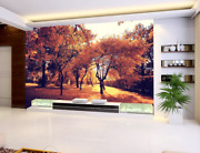 3d Autumn Forest Zhua4263 Wallpaper Wall Murals Removable Self-adhesive Zoe
