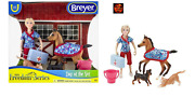 Breyer Horse Toy Playset 62028 Day At The Vet Foal, Cat, Dog + Accessories New