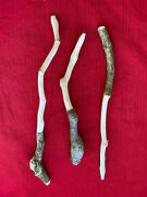 3 Ivy Wood Wands Witchcraft Magic Spells Altar Druid Pagan Wicca Occult Witches