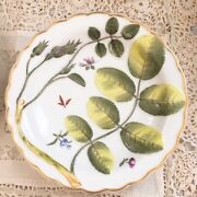 Royal Worcester The Blind Earl Raised Scalloped Dish 8
