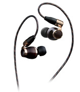 Victor Jvc Ha-fw10000 Wood Series Canal Type Earphone Re-cable / High Resolution