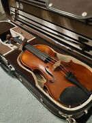 Violin Bow And Case For Sale