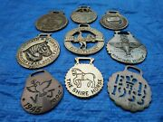 A Good Group Of 9 Interesting Vintage And Souvenir Horse Brasses