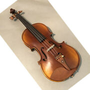 Sky Fl001-jb2 Hand Made Professional 4/4 Full Size Violin Jujube Fitted Twopiece