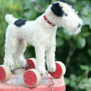 Antique Steiff Dog Foxy Fox Terrier On Wheels 1950s Mohair Fur Pull Toy For Doll