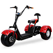 Long Range Mobility Trikes 3 Wheels Electric Tricycle Citycoco Scooters