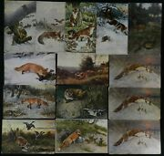 Fox Geese German Russian H.k.andco Npg Antique Foreign Postcard Lot Of 14