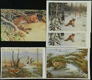 Fox Goose Germany Uk Russia Foreign Postcard Lot Of 5