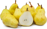 1 Pear Bartlett Edible Fruit Tree 3 Feet+ .zones 4-8. Self Pollinizing Potted