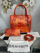 Brahmin Spicy Orange Small Caroline Matching Ady Wallet Nwts Gorgeous Sold Out