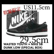 Men 11.5us Wasted Youth Nike Sb Dunk Low