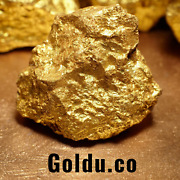 Goldu.co The Actual Domain Name To Sell Gold Gold Bullion Coins And Bars