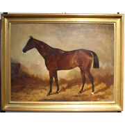 Antique 19th England Original Hunter In Loose Box Oil Canvas Painting Signed H