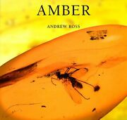 Amber By Andrew Ross Excellent Condition