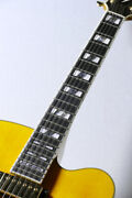 Ibanez Pm2 Antique Amber F1909679 Hollow Body With H/c Ships Safely From Japan