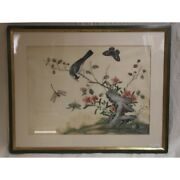 Antique 18th Rare China Original Bird Insects Gouache Watercolor Paper Painting