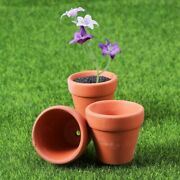 12 Pcs Mini Clay Pot Set Seeds Planter Nursery Pottery Summerpackage Orchid Cool