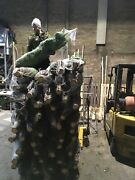 Real Christmas Tree Nordmann Tree Premium Class Free Delivery Wholesale Price
