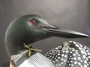 Collectible Rare Limited Edition Wild Wings Loon Decoy W/ Chic On Back - Nice