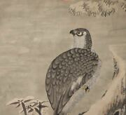 Hanging Scroll Japanese Painting Japan Hawk Antique Very Old Picture Aged E641