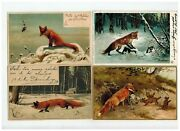 Foxes Hunting Germany/berlin/ecuador/foreign/xmas 1906 Antique Postcard Lot Of 4