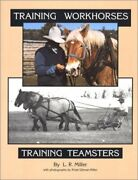 Training Workhorses / Training Teamsters By Lynn R Miller And Kristi Gilman-miller