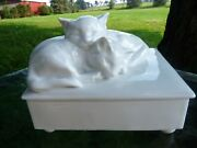 Meissen Germany Weifs White Pair Of Cats On Box Figurine By Erich Hösel 78873