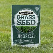 40 Lbs Grass Seeds Kentucky Fescue Grass Seed Green Lawn Seed Turf Plant Builder