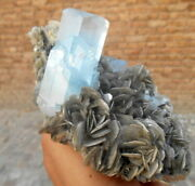 900g Very Beautiful Aquamarine Crystals Bunch With Muscovite Combine From Nagar