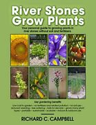 River Stones Grow Plants By University Richard Campbell And Henry Teng Excellent