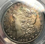 1900-s Morgan 1 Pcgs Ms65 Cac Approved Purple Tone