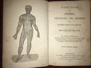 1858 First Book On Anatomy Physiology And Hygiene Calvin Cutter Md Wood Cut Pics