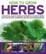 How To Grow Herbs A Practical Guide To Growing 18 By Richard Bird Mint