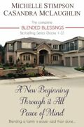 Blended Blessings Complete Series By Michelle Stimpson And Casandra Mclaughlin New