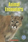 Animal Encounters A Chapter Book [true Tales Animals] Paperback Toor Atif