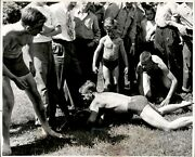 Lg905 1946 Original Photo Kitchi Kahniss Summer Camp Greased Pig Chase Contest