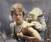 Frank Oz Mark Hamill Signed 16x20 Photo Star Wars Authnetic Autograph Becket C