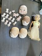 Antique Bisque Heads And Composition And Doll For Repair Parts Vintage Grace Putnam