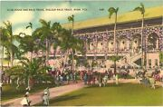 People At Club House And Race Track Hialeah Race Track Miami Florida Postcard