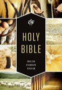 Esv Holy Bible, Textbook Edition By Esv Bibles By Crossway - Hardcover Brand New