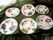Williams Sonoma By Spode English Floral - Set Of 6 - 9 Plates Made In England