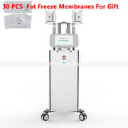 Standing Freeze Frozen Cooling Slimming Vacuum Body Contouring Salon