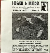 Crosswell And Harrison Rubber Decoy Pigeons Vintage Advertisement 1959